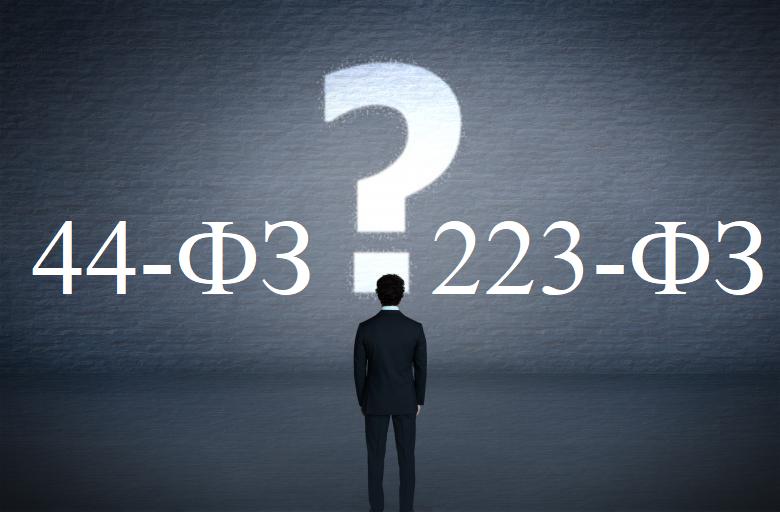 Главные отличия между 44-ФЗ и 223-ФЗ.